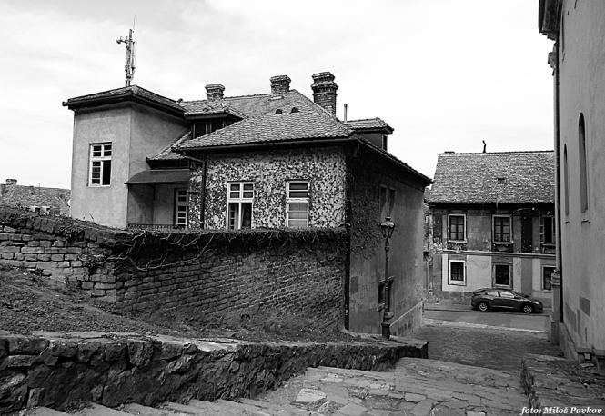 dscn1869